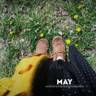 May || Mixtape 07
