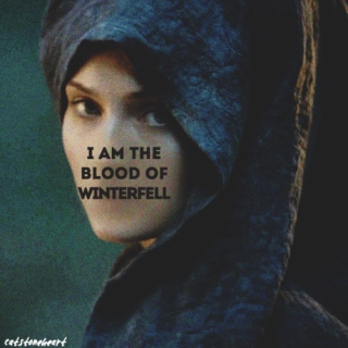 The blood of Winterfell - Sansa Stark.