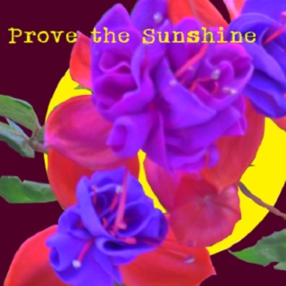 Prove the Sunshine