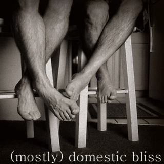 (mostly) domestic bliss