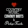 All I Need Is Country Music