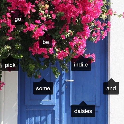 go be indie and pick some daisies