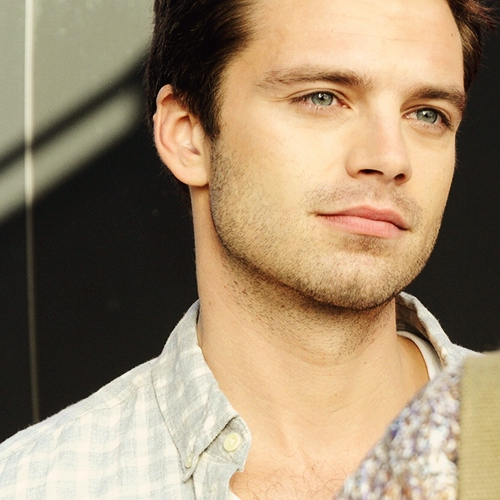 sebastian stan ruined my life