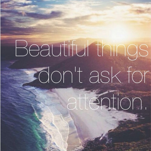Everything has beauty ♥