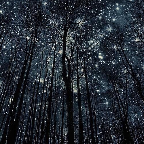 All of these stars will guide us home