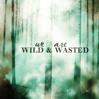 we are wild and wasted