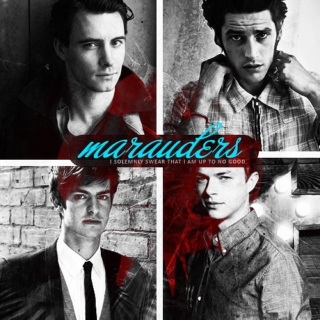 the marauders; dangerous animals