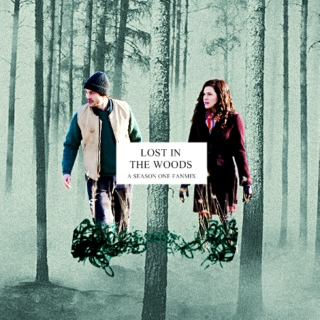 lost in the woods   a hannibal s1 fanmix