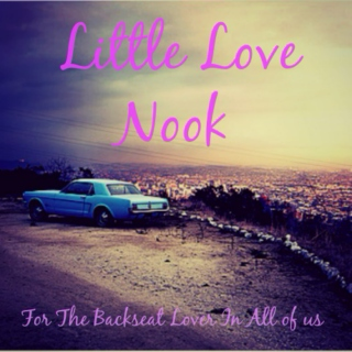 Little Love Nook: For The Backseat Lover In All Of Us