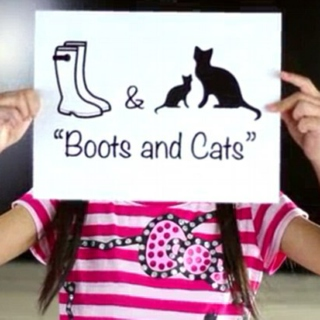 The Boots and the Cats