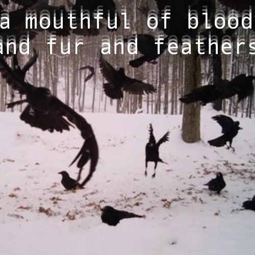 a mouthful of blood and fur and feathers