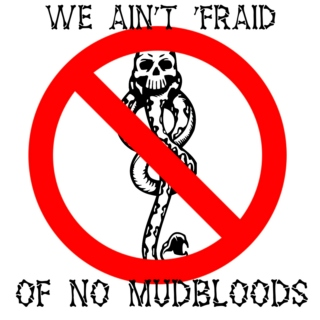 Mudbloods not allowed