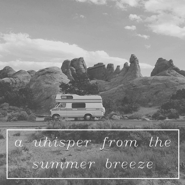 a whisper from the summer breeze