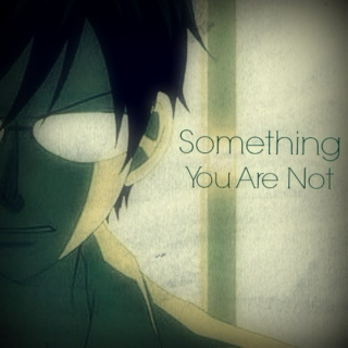 Something You Are Not
