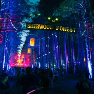 The Electric Forest 2014 Mix