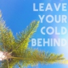 leave your cold behind