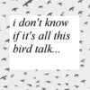 I Don't Know If It's All This Bird Talk...