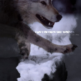 Can't Outrun the Wolves