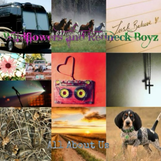 Wildflowers and Redneck Boyz: All About Us