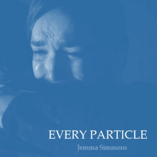 Every Particle