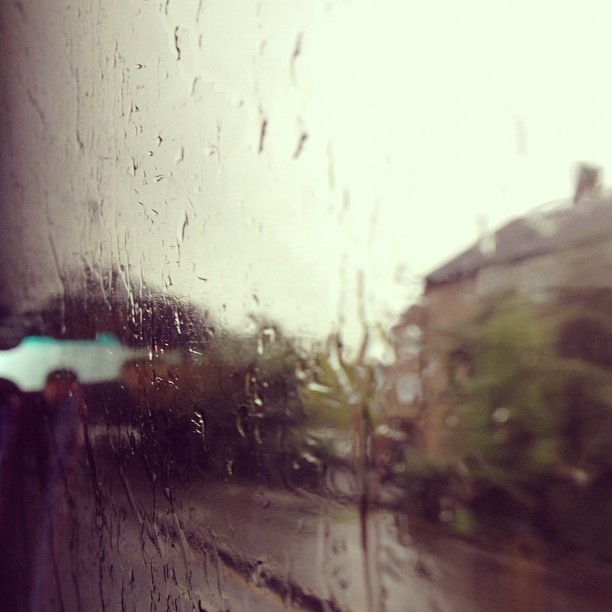 I Find Peace in the Rain and in You.
