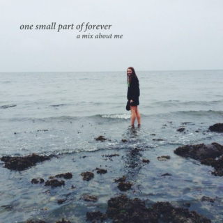 one small part of forever