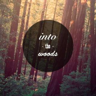 - into the woods -