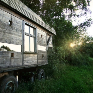 The Trailer in the Woods