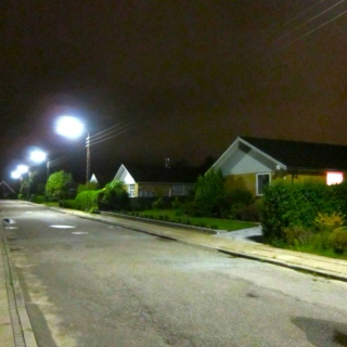 A Summer Night in Suburbia