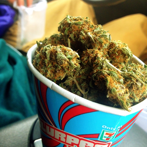 Cup Of Weed