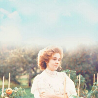 Miss Anne Shirley