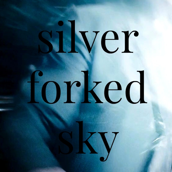 silver forked sky