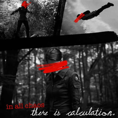in all chaos there is calculation.