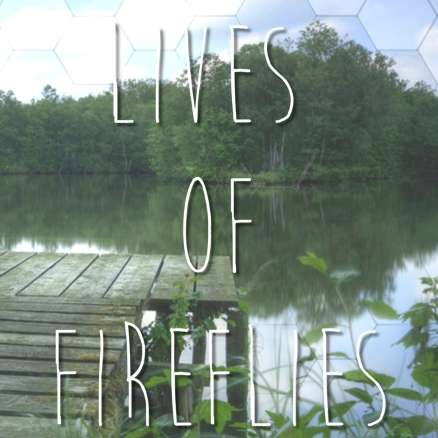 The Lives Of Fireflies - NaNoWriMo 2014