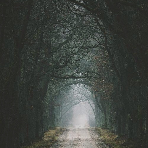 Lonely Roads and Sudden Senses of Forboding