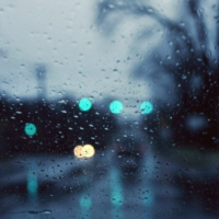 rain and pavement ';