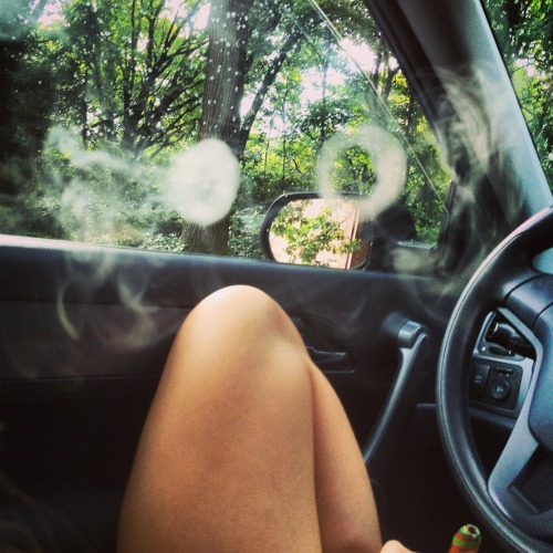 lets go on a trip,