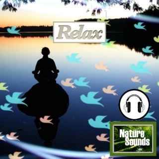 Meditation With Nature