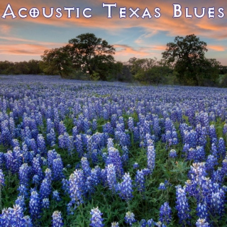 Acoustic Texas Blues