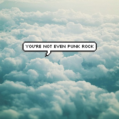 You're not even punk rock