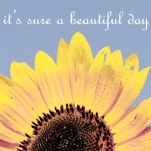 ; it's sure a beautiful day