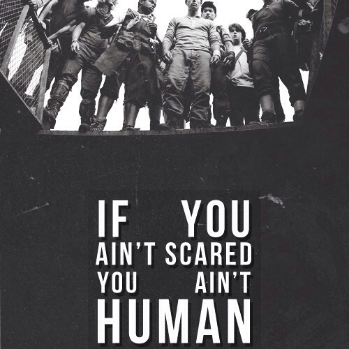 If you ain't scared, you ain't human// Maze Runner