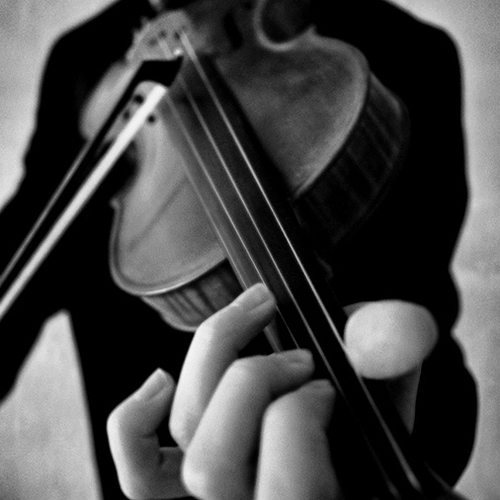 Violin Covers