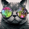 Return of The Good Vibes