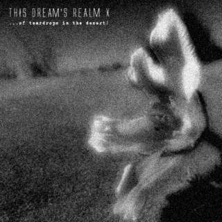 this dream's realm X - ...of teardrops in the desert!!!