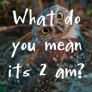 What do you mean its 2 am?