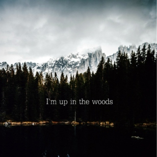I'm up in the woods...