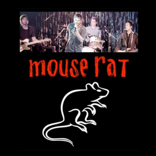 THE BEST OF MOUSE RAT