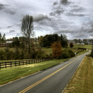 A Drive Down Cobble Hills Road