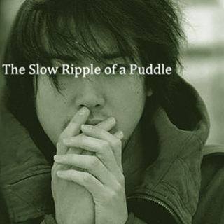The Slow Ripple of a Puddle